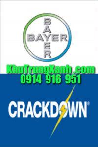 crackdow10sc-vua-diet-con-trung