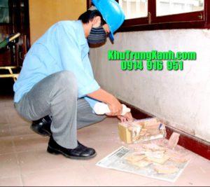 diet-moi-tan-goc-phong-chong-moi-nen (2)