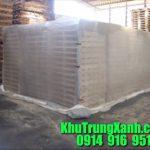 Quy trình Khử trùng , hun trùng Pallet gỗ tiêu chuẩn quốc tế ISPM 15