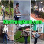 Công ty phun sát trùng kho - dịch vụ phun xịt côn trùng - Khử Trùng XANH