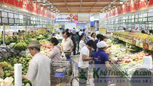 Kiểm soát côn trùng dịch hại trung tâm thương mại và siêu thị bán lẻ