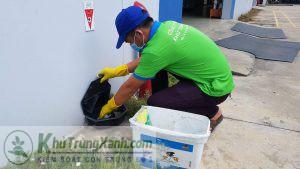 Công ty diệt côn trùng hiệu quả tại Bắc Ninh
