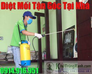 Dịch vụ diệt mối uy tín nhất tại TPHCM Sài Gòn