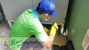 công ty dịch vụ diệt chuột (2)