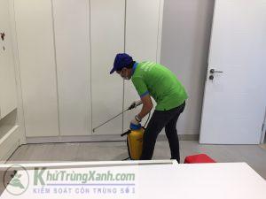 dịch vụ diệt kiến tại nhà