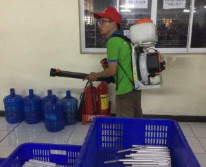 dịch vụ phun thuốc ruồi