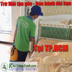 CÔNG TY DIỆT MỐI UY TÍN TẠI TP.HCM ( Thành phố Hồ Chí Minh )