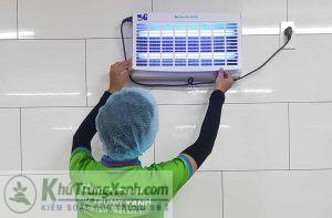 Công ty dịch vụ diệt côn trùng tại Quảng Bình