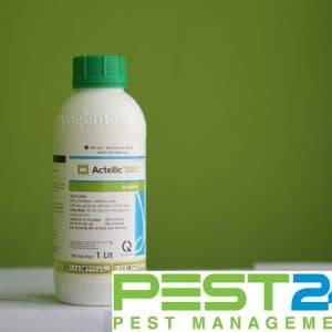 Thuốc diệt côn trùng Actellic 50EC