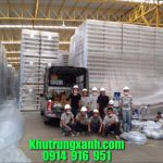 Công ty Khử Trùng kho – Kiểm soát côn trùng kho