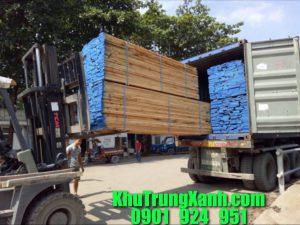 Khử Trùng , Hun trùng Container gỗ tại Công ty Bình Phú – Bình Dương