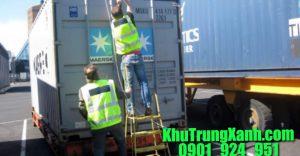 bơm-thuốc-khử-trùng-container-gỗ
