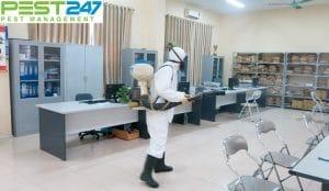 Dịch vụ khử trùng – Công ty khử trùng tại An Giang
