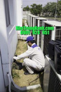 Dịch vụ bắt chuột , bẫy chuột tại nhà uy tín