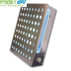 Đèn diệt côn trùng Vectothor-I-TRAP-25