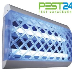 Đèn diệt côn trùng Vectothor-I-Trap-50E