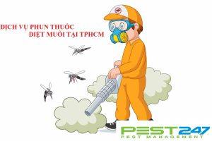 Công ty dịch vụ phun thuốc diệt muỗi hiệu quả nhất tại TPHCM