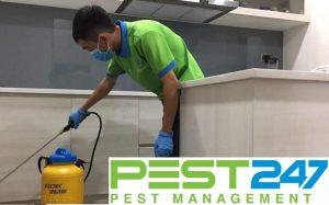 PEST CONTROL là gì? Công ty Pest Control Uy Tín?
