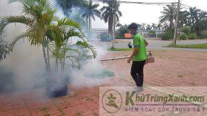 pest control phun côn trùng dạng khói