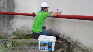 Công ty diệt côn trùng hiệu quả tại Hà Nội
