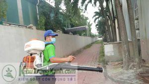 Công ty dịch vụ diệt côn trùng tại Sơn La