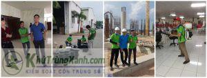Công ty dịch vụ diệt côn trùng tại Thanh Hóa