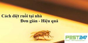 Những cách đuổi, diệt ruồi tại nhà đơn giản, hiệu quả nhất