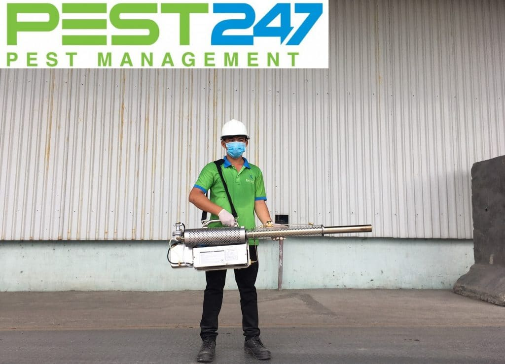 Công ty diệt côn trùng tại Bình Thuận