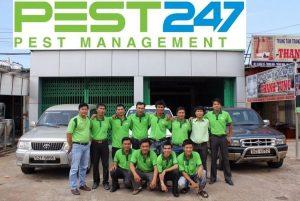 Công ty xử lý côn trùng, dịch hại chuyên nghiệp, hiệu quả tại Bình Định