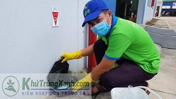 Khảo sát côn trùng dịch hại