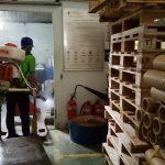 Công ty dịch vụ diệt côn trùng tại Hội An