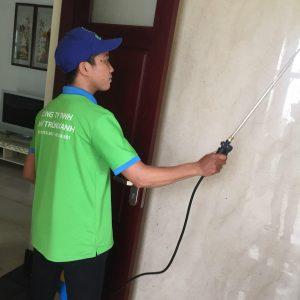 Công ty dịch vụ diệt côn trùng tại Nam Định