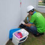 Công ty dịch vụ diệt côn trùng tại Vĩnh Phúc