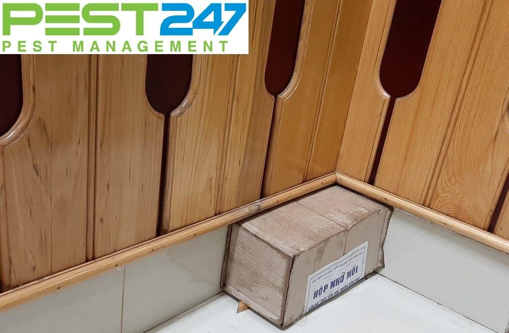 Bán hộp nhử mối - Công ty PEST247 - GFC