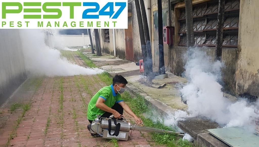Công ty dịch vụ diệt côn trùng tại Bình Thuận