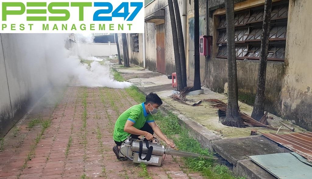 Công ty diệt côn trùng Bình Thuận