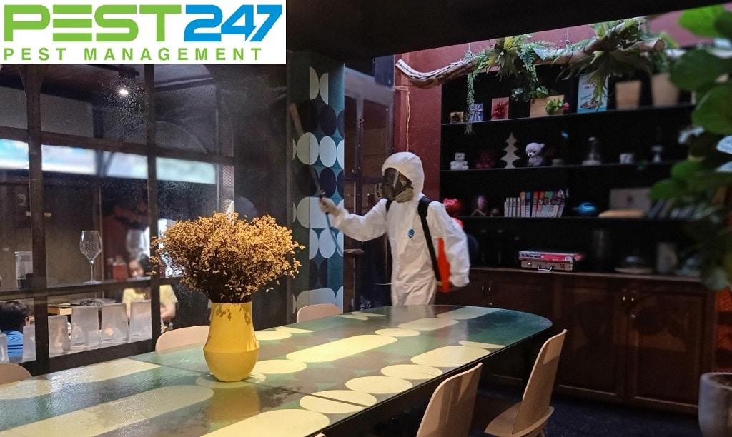 Dịch vụ diệt côn trùng nhà hàng tại TPHCM