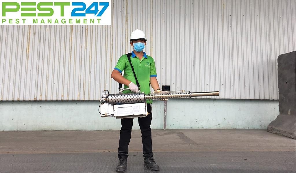 Dịch vụ diệt mối trọn gói tại Phú Nhuận