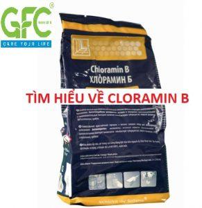 """Tìm hiểu """" đầy đủ nhất """" về Cloramin B thuốc phun khử trùng mùa covid"""