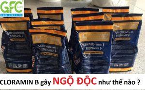 hướng dẫn sử dụng an toàn khi phun thuốc cloramin b