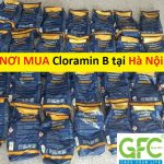 Nơi bán , địa chỉ mua thuốc Cloramin B khử trùng tại Hà Nội giá rẻ